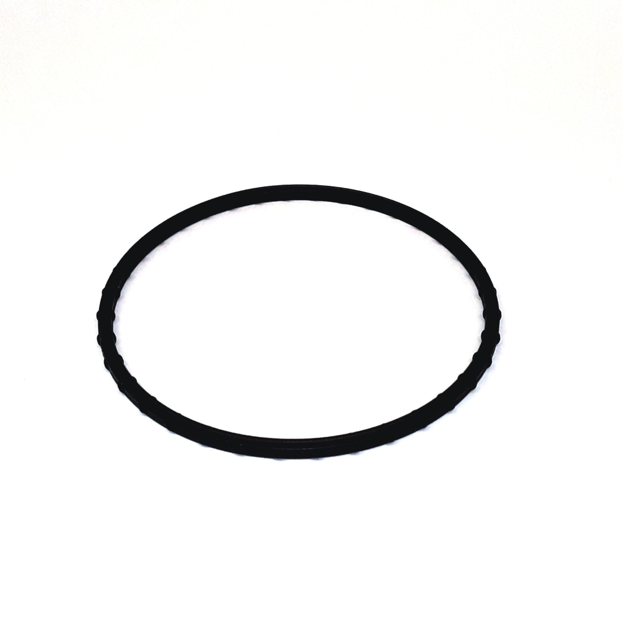 2010 volkswagen routan engine water pump gasket seal ring. Black Bedroom Furniture Sets. Home Design Ideas